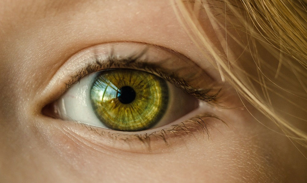 iridología
