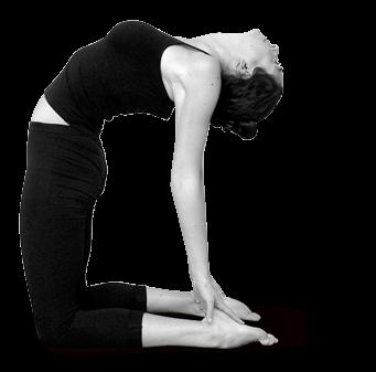 Hatha Yoga dinámico
